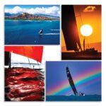 Notecards-Sharon-Green