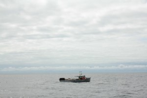 A lobster boat in the Northumberland Strait